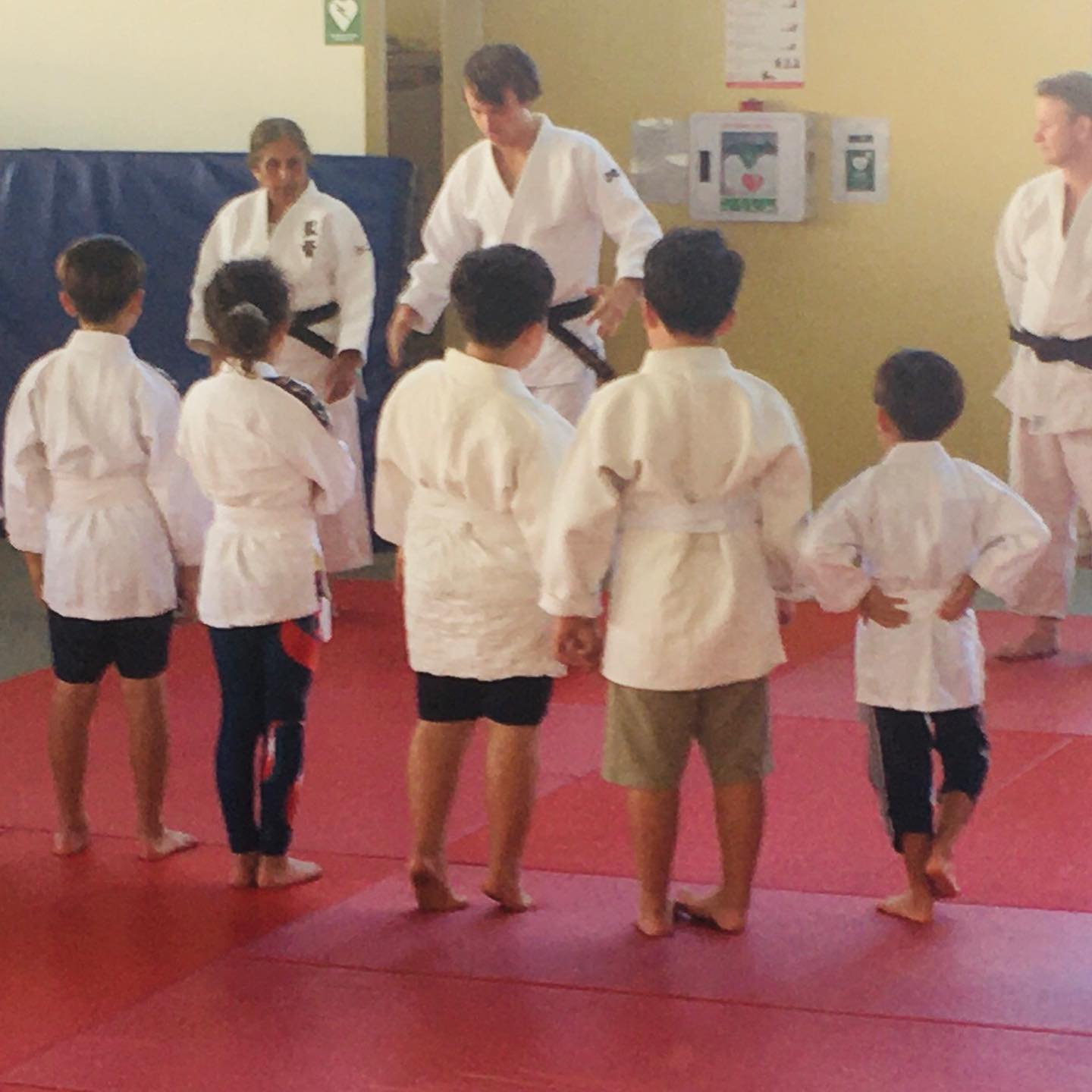 Junior Judo Term 3 Program
